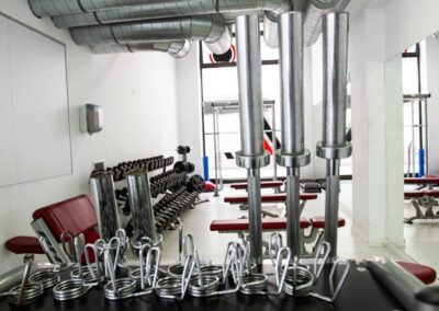 material musculación gimnasio